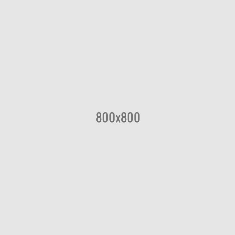 SG 002 Earphones